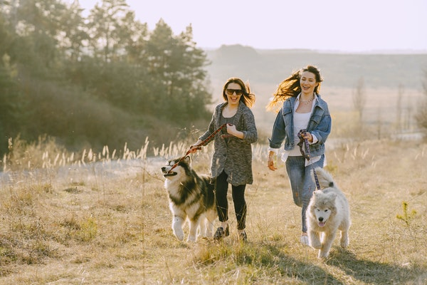 Women running with dogs - The Ranch Pet Resort